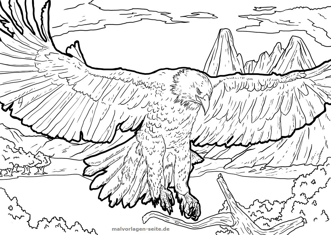 Adler Zeichnungen Zum Ausmalen Das Beste Von Adler Ausmalbilder Luxus Ausmalbilder Iron Man Uploadertalk Sammlung