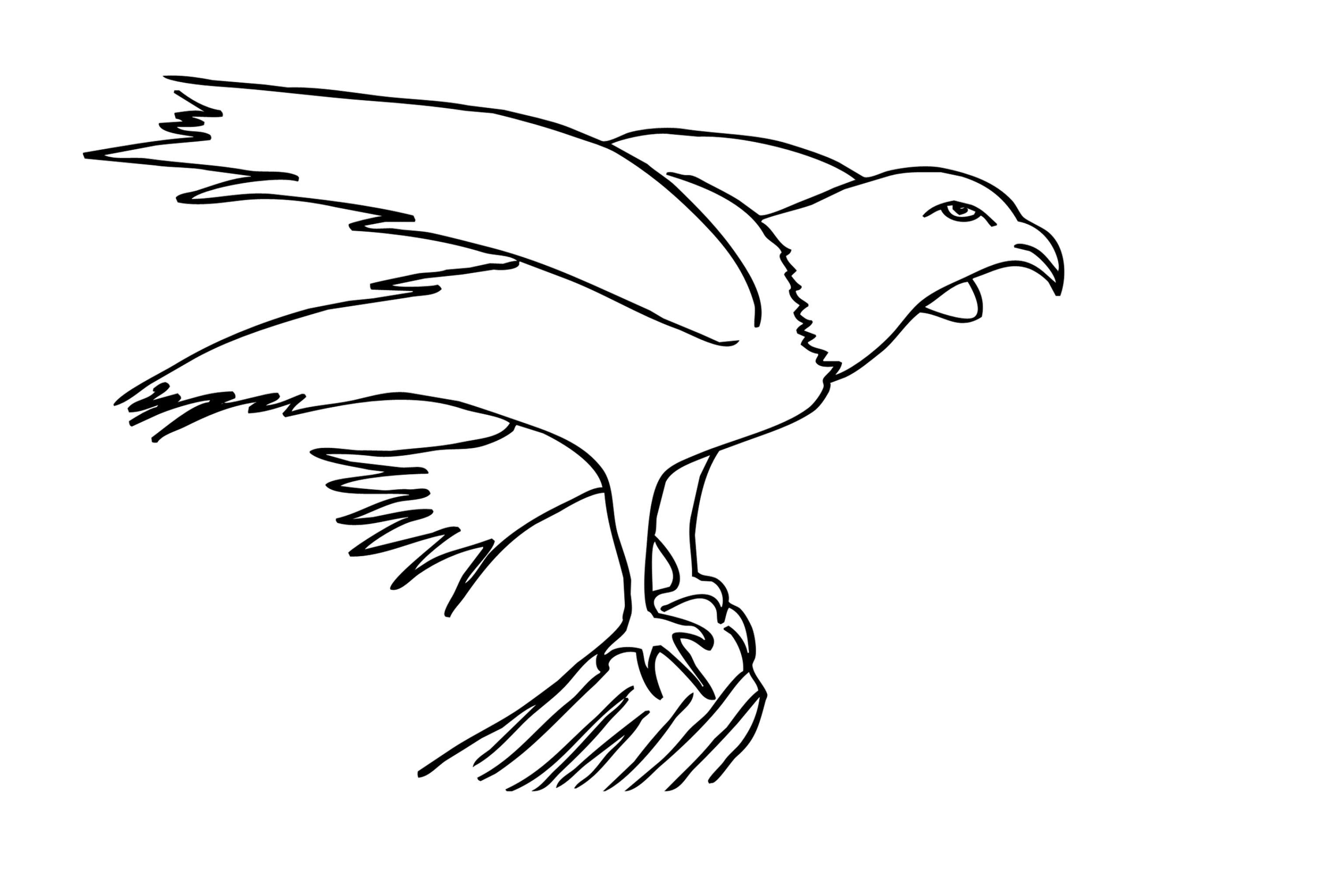 Adler Zeichnungen Zum Ausmalen Einzigartig Adler Ausmalbilder Für Kinder Gratis Einzigartig Ausmalbilder Adler Bild