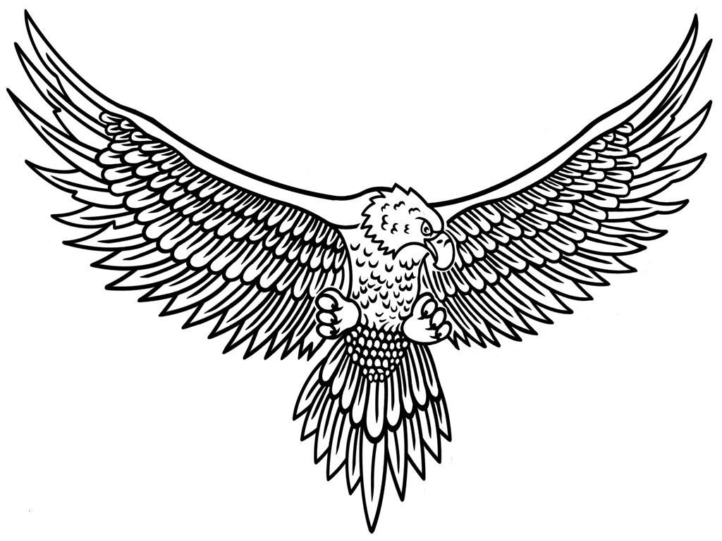 Adler Zeichnungen Zum Ausmalen Einzigartig Adler Ausmalbilder Luxus Ausmalbilder Iron Man Uploadertalk Fotos