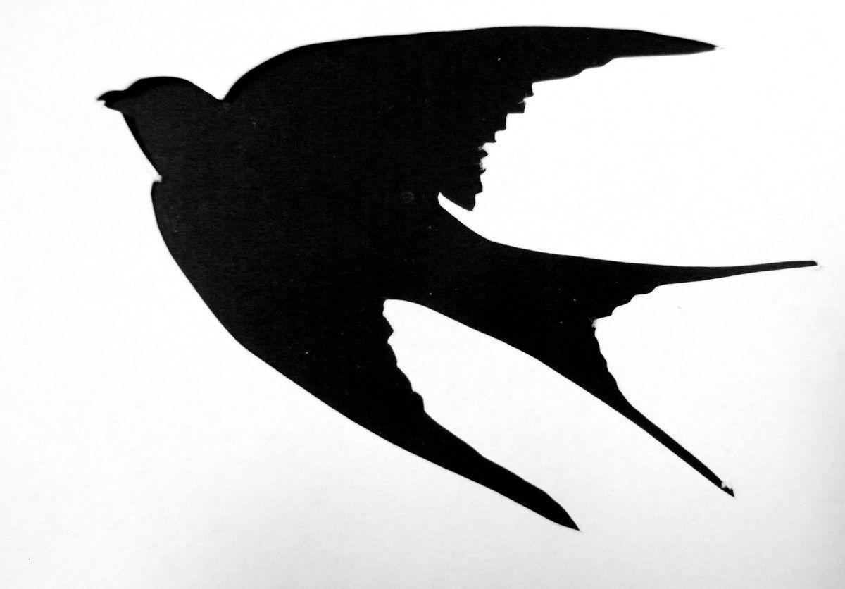 Adler Zeichnungen Zum Ausmalen Neu Pin Von Siamnana Hi Beverage Auf Test Schön Ausmalbilder Adler Bilder
