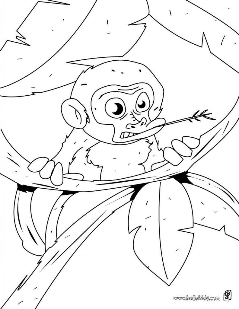 Affen Zum Ausmalen Genial Druckbare Malvorlage Ausmalbilder Affen Beste Druckbare Galerie