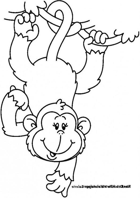 Affen Zum Ausmalen Neu 26 Luxus Affe Ausmalen – Malvorlagen Ideen Stock