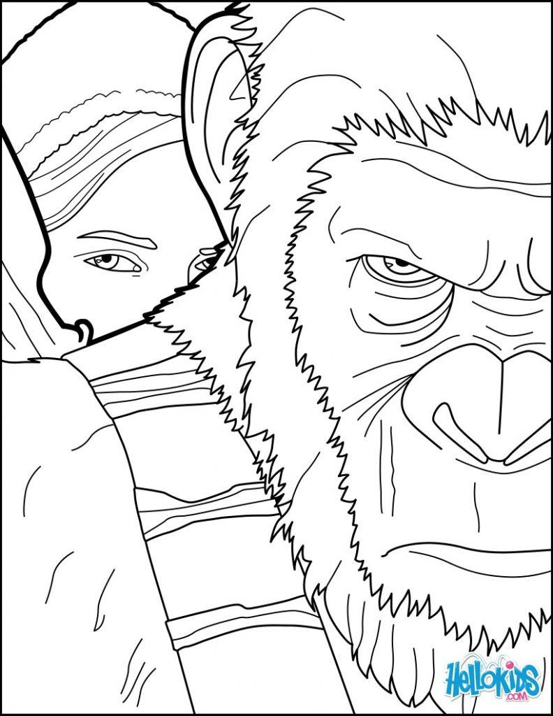Affen Zum Ausmalen Neu Druckbare Malvorlage Ausmalbilder Affen Beste Druckbare Fotos