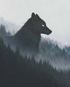 Anime Tiere Süß Zeichnen Inspirierend 881 Besten Heulender Wolf Bilder Auf Pinterest In 2018 Stock