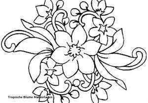 Anspruchsvolle Mandalas Zum Ausdrucken Das Beste Von Ausmalbilder Blumen attachmentg Title Sammlung