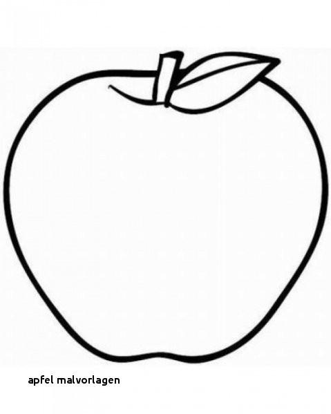 Apfel Zum Ausmalen Das Beste Von 29 Apfel Malvorlagen Stock