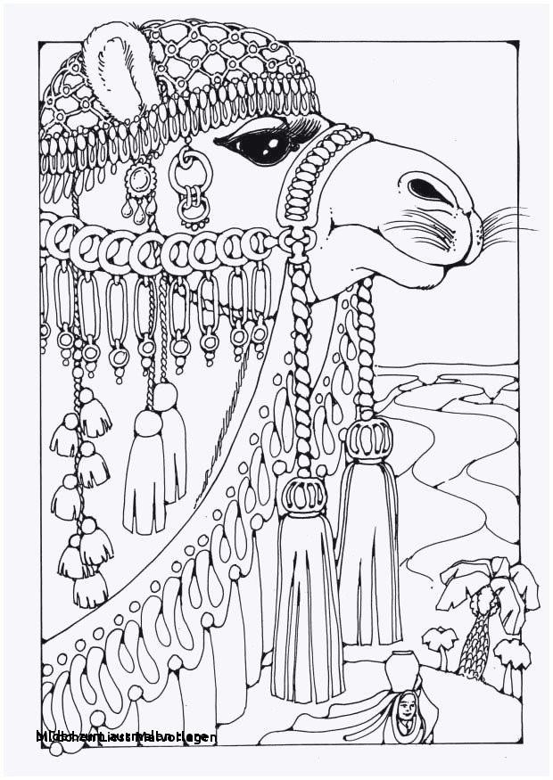 Apfel Zum Ausmalen Genial Bilder Zum Ausmalen Tiere Malvorlage A Book Coloring Pages Best sol Stock