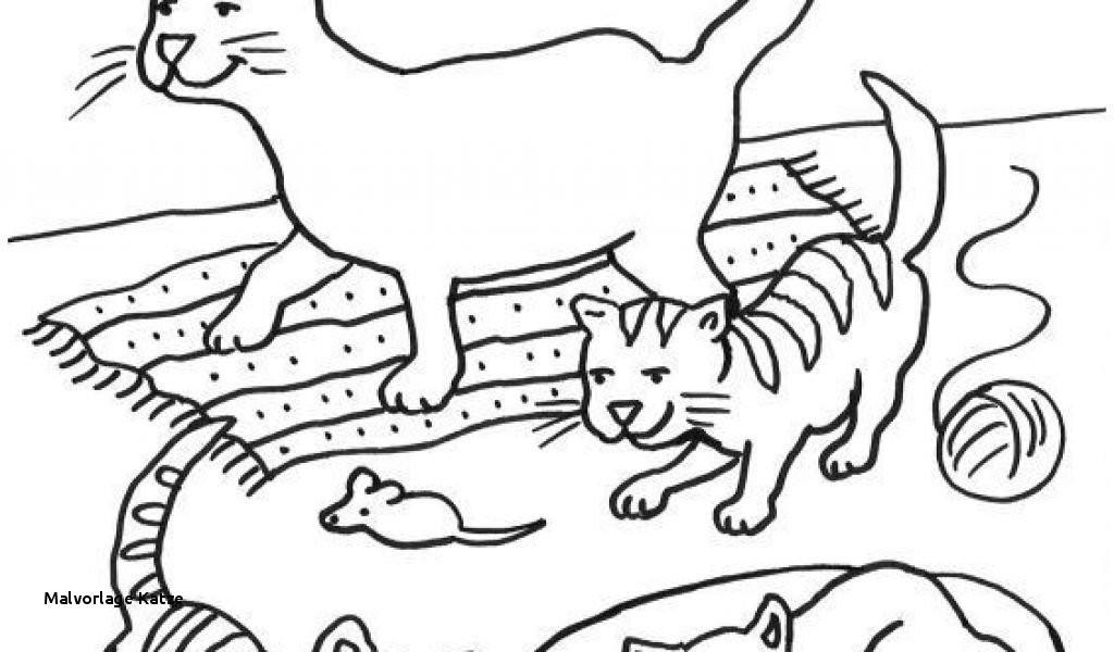 Arche Noah Ausmalbild Neu Ausmalbild Katze Fotografieren
