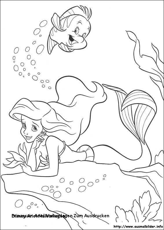 Arielle Ausmalbilder Zum Drucken Kostenlos Genial Prinzessin Ariel Malvorlagen Zum Ausdrucken 20 Disney Ariel Das Bild