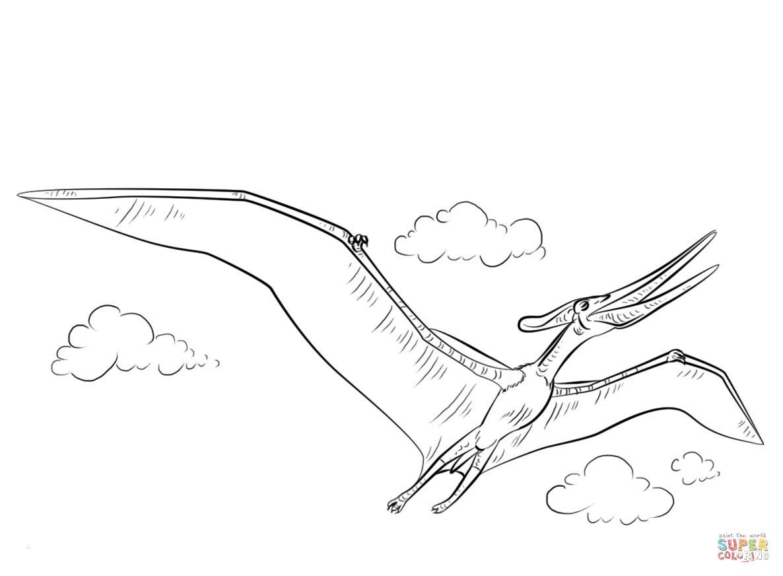 Arlo Und Spot Ausmalbilder Einzigartig Arlo Und Spot Ausmalbilder Schön Ausmalbild Pteranodon Fliegend Neu Fotos