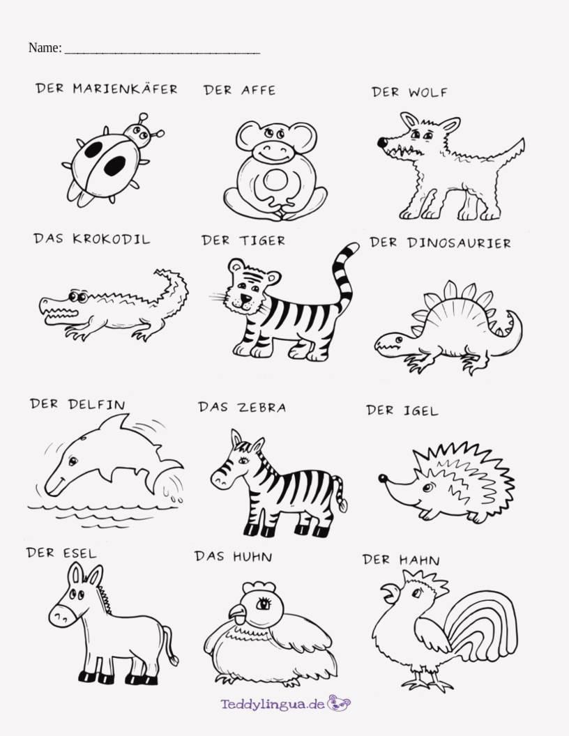Ausmalbild Bauernhof Tiere Frisch 25 Druckbar Ausmalbilder Bauernhoftiere Zum Ausdrucken Galerie