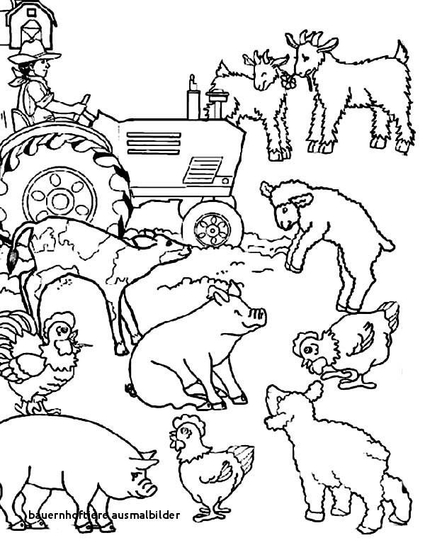 Ausmalbild Bauernhof Tiere Genial 21 Bauernhoftiere Ausmalbilder Sammlung