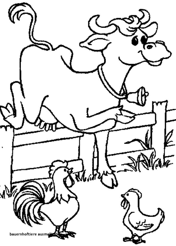 Ausmalbild Bauernhof Tiere Inspirierend 21 Bauernhoftiere Ausmalbilder Galerie