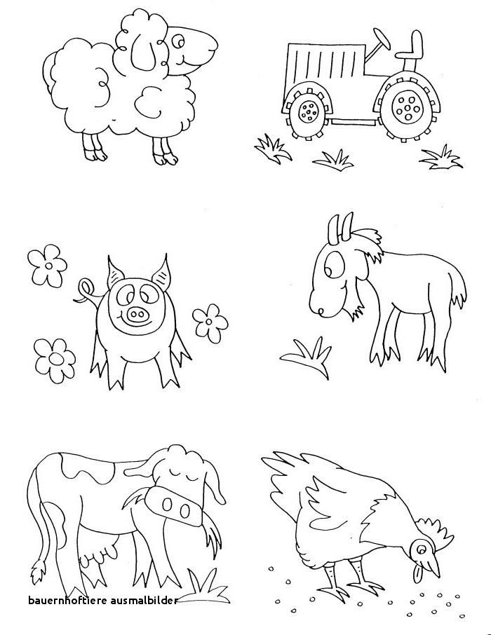 Ausmalbild Bauernhof Tiere Inspirierend 21 Bauernhoftiere Ausmalbilder Sammlung
