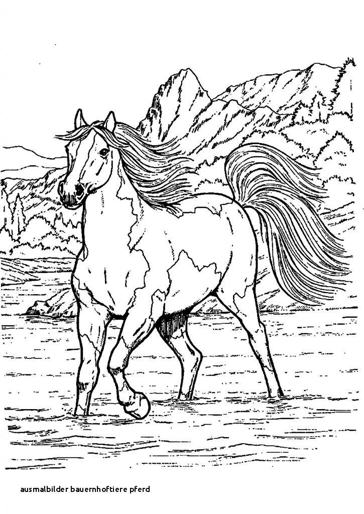 Ausmalbild Bauernhof Tiere Inspirierend 24 Ausmalbilder Bauernhoftiere Pferd Colorprint Galerie
