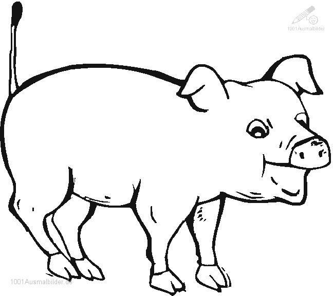 Ausmalbild Bauernhof Tiere Inspirierend Bauernhoftiere Malvorlagen Das Beste Von 404 Not Found – Malvorlagen Das Bild