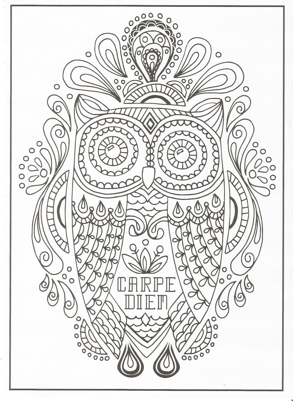 Ausmalbild Bibi Und Tina Auf Amadeus Und Sabrina Einzigartig Timeless Creations Creative Quotes Coloring Page Carpe Diem Owl Best Fotografieren