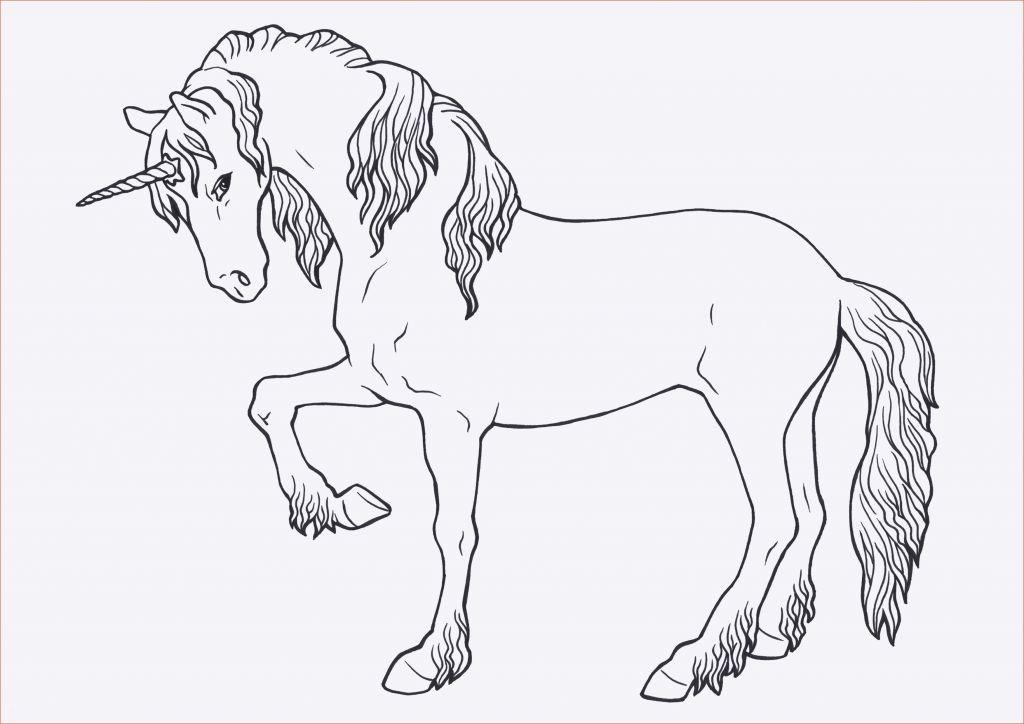 Ausmalbild Harry Potter Das Beste Von Ausmalbilder Pferde Mit Madchen Frisch Malvorlagen Harry Potter Stock