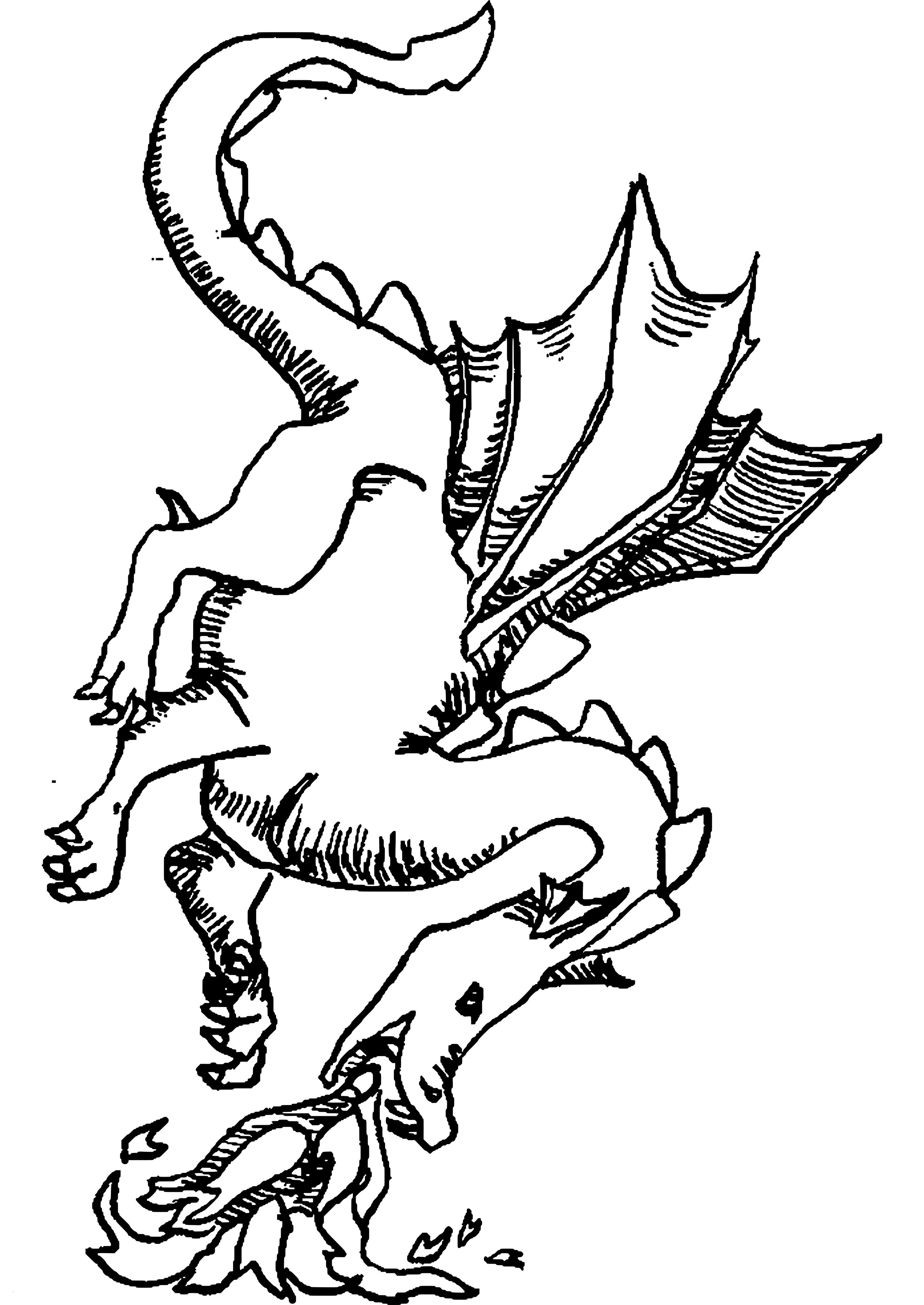 Ausmalbild Harry Potter Einzigartig Drachen Malvorlagen Neu Ausmalbilder Drachen Kostenlos Malvorlagen Das Bild