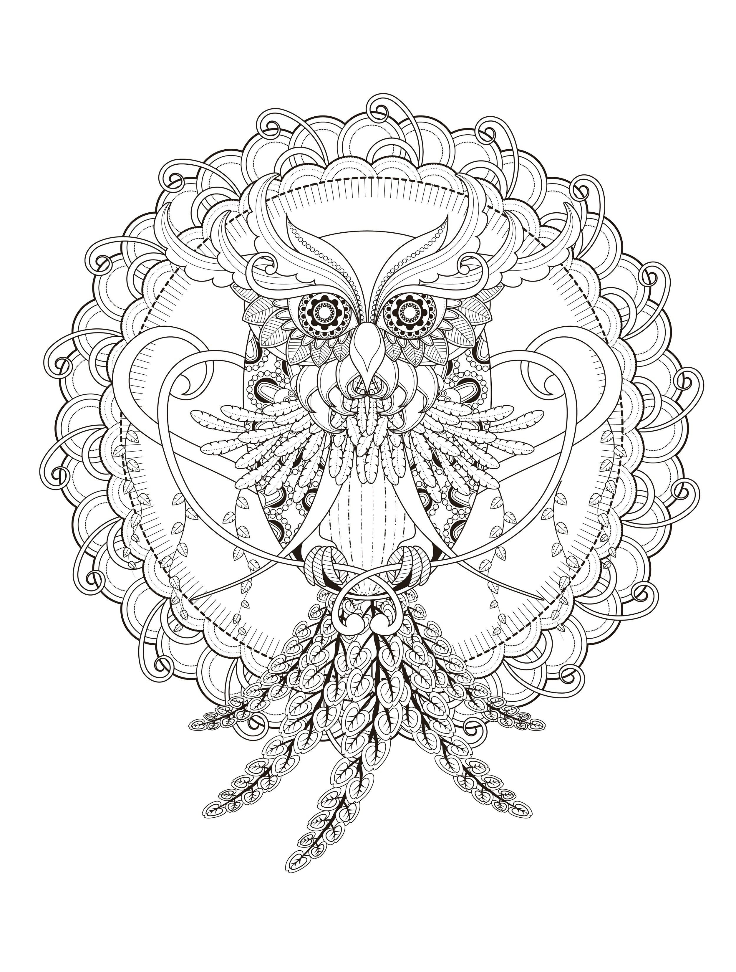 Ausmalbild Mandala Eule Das Beste Von Malvorlagen Für Erwachsene Stock