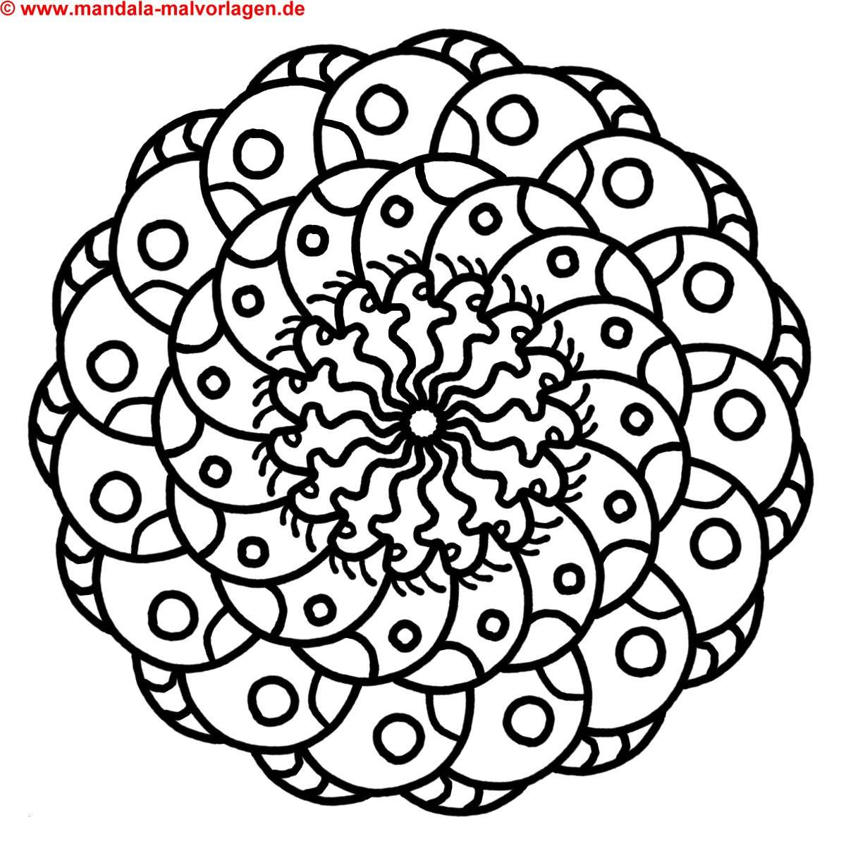 Ausmalbild Mandala Eule Frisch Eulen Malvorlagen Ausdrucken Schöne Ausmalbilder Malvorlagen Eule Bilder