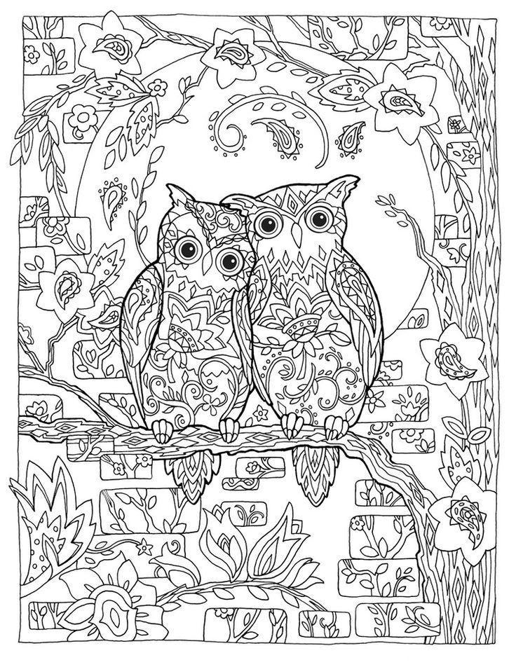 Ausmalbild Mandala Eule Genial 1000 Ideas About Ausmalbilder Eulen Pinterest Druckfertig Bild