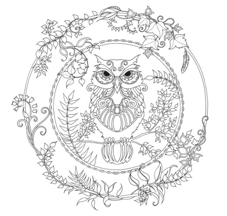 Ausmalbild Mandala Eule Genial Eule Zum Ausmalen Bilder Ideen Bilder