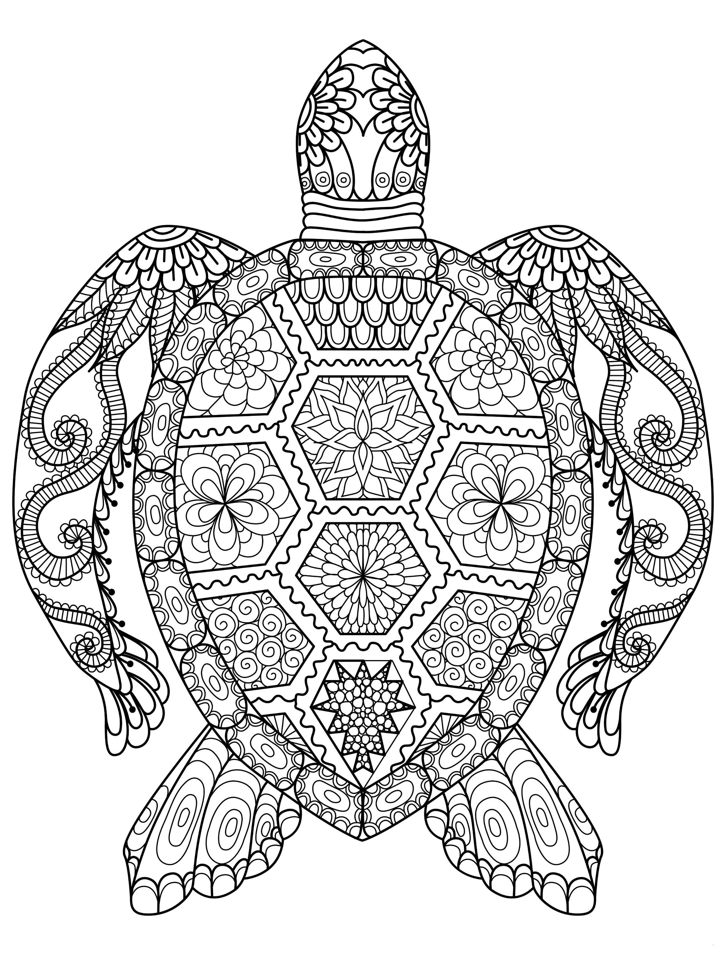 Ausmalbild Mandala Eule Neu 23 Einzigartig Eule Ausmalen – Malvorlagen Ideen Bilder