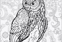 Ausmalbild Mandala Eule Neu Owl Mandala Best Coloring Owls Inspirational Coloring Pages Line Das Bild