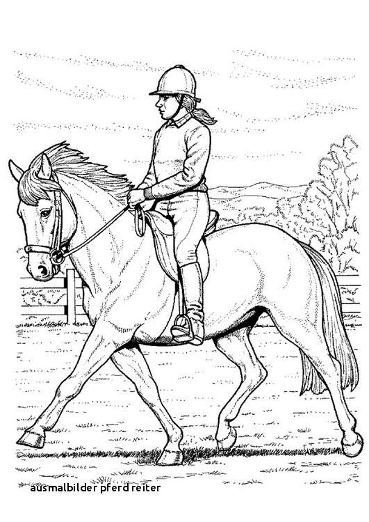 Ausmalbild Pferd Mit Reiter Einzigartig Creativecoloring Bild