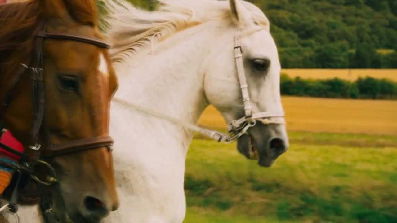 Ausmalbild Pferd Mit Reiter Einzigartig Lernspiele Färbung Bilder Ausmalbilder Pferde Mit Reiter Galerie