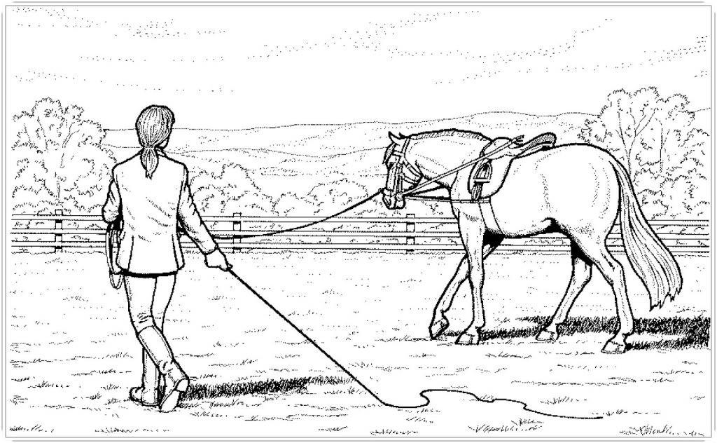 Ausmalbild Pferd Mit Reiter Frisch Druckbare Malvorlage Ausmalbilder Kostenlos Pferde Beste Fotos