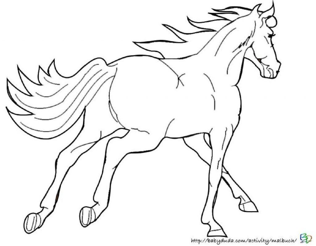 Ausmalbild Pferd Mit Reiter Genial Janbleil Pferde Mandalas Zum Ausdrucken Scha¶n Ausmalbilder Bild