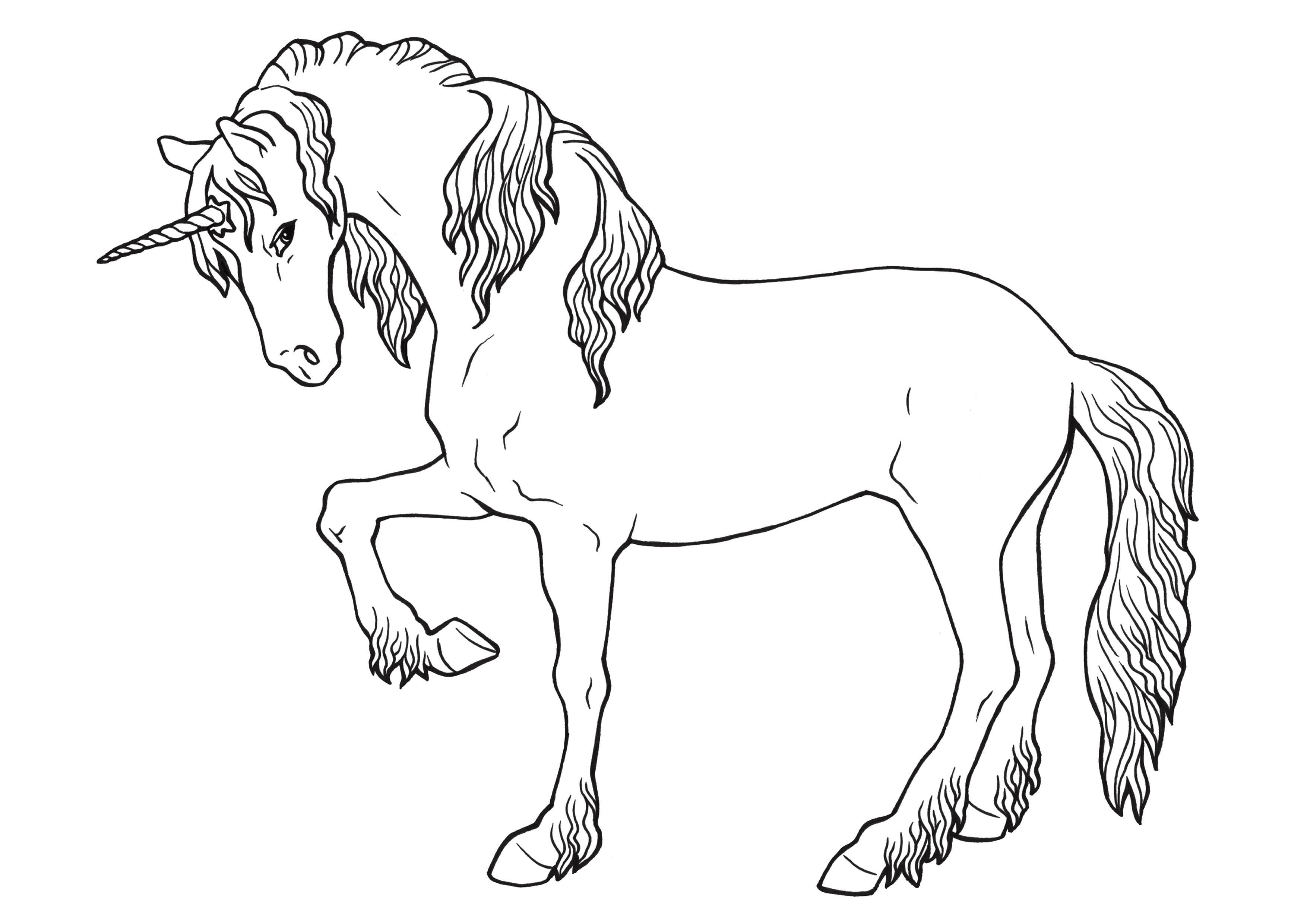 Ausmalbild Prinzessin Einhorn Das Beste Von 25 Genial Ausmalbilder Prinzessin Und Einhorn Das Bild