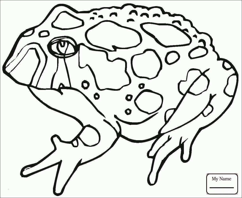 Ausmalbild Super Mario Inspirierend sonic Bilder Zum Ausmalen Fotos Mario Luigi and toad Coloring Pages Fotos