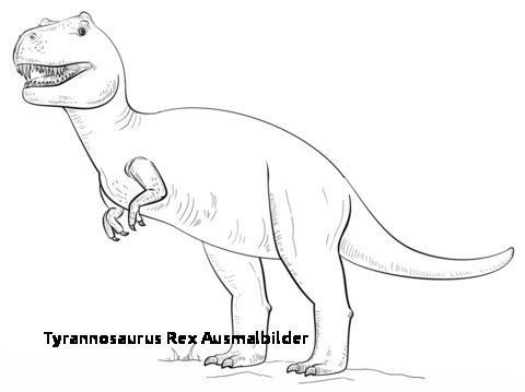 Ausmalbild T-rex Genial 27 Tyrannosaurus Rex Ausmalbilder Colorbooks Colorbooks Fotografieren