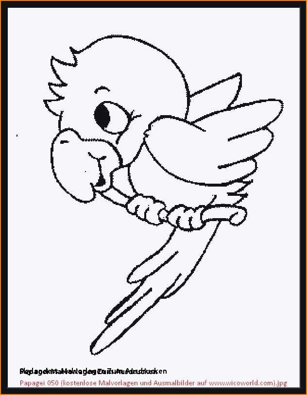Ausmalbilder Angry Birds Das Beste Von Skylanders Malvorlagen Zum Ausdrucken Ausmalbilder Angry Birds 4 Fotos