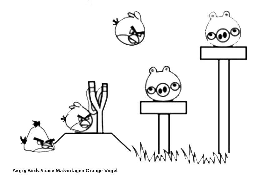 Ausmalbilder Angry Birds Neu 29 Angry Birds Space Malvorlagen orange Vogel Sammlung