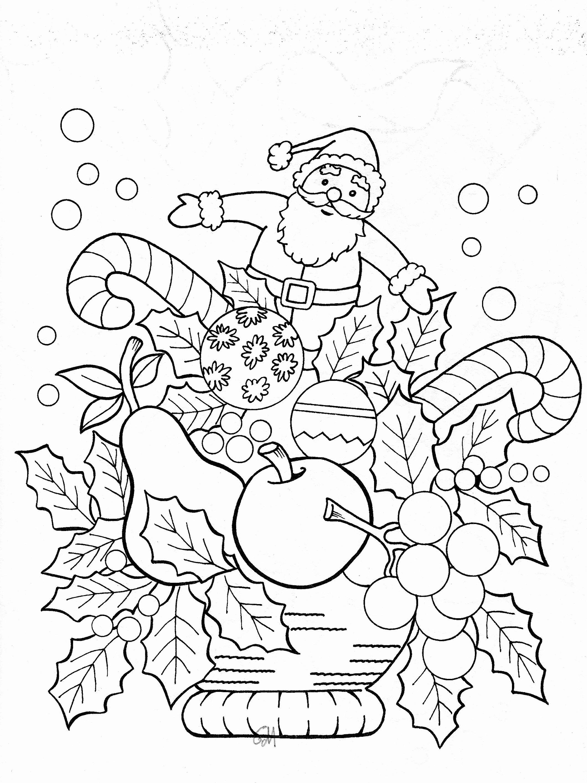 Ausmalbilder Baby Tiere Frisch Tiere Im Winter Grundschule Inspiration 35 Winter Malvorlagen Bild