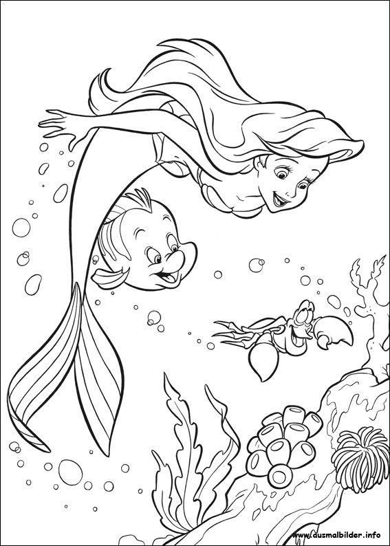 Ausmalbilder Barbie Meerjungfrau Genial Arielle Meerjungfrau Malvorlagen Malbuch Bilder
