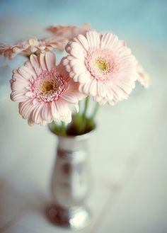 Ausmalbilder Blumenstrauß Mit Vase Das Beste Von Die 142 Besten Bilder Von Flowers Into Vase ◕‿◕✿ Bild