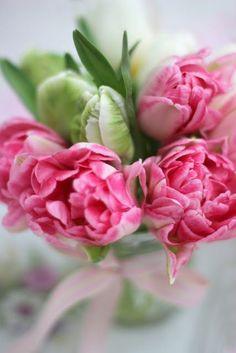 Ausmalbilder Blumenstrauß Mit Vase Das Beste Von Die 1588 Besten Bilder Von Blumen Flowers Pastell Peonien Rosen Fotografieren