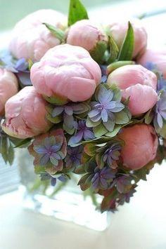 Ausmalbilder Blumenstrauß Mit Vase Das Beste Von Die 1588 Besten Bilder Von Blumen Flowers Pastell Peonien Rosen Galerie