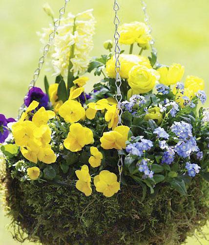Ausmalbilder Blumenstrauß Mit Vase Das Beste Von Garten Balkon 1396 Rtkl Fotografieren