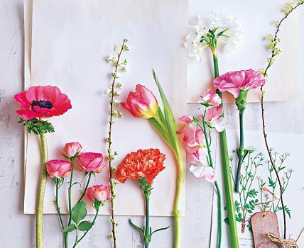 Ausmalbilder Blumenstrauß Mit Vase Einzigartig Garten Balkon 1396 Rtkl Sammlung
