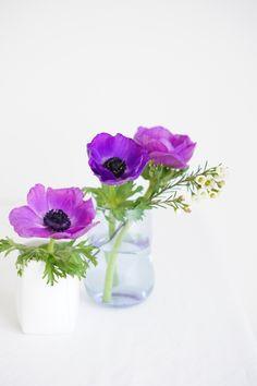 Ausmalbilder Blumenstrauß Mit Vase Frisch 2511 Besten Blumenbuketts Bilder Auf Pinterest Stock