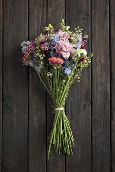 Ausmalbilder Blumenstrauß Mit Vase Frisch 27 Besten Blumen Pur Bunt Bilder Auf Pinterest In 2018 Fotografieren