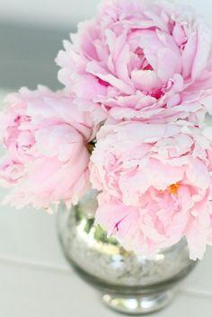 Ausmalbilder Blumenstrauß Mit Vase Genial Die 142 Besten Bilder Von Flowers Into Vase ◕‿◕✿ Galerie