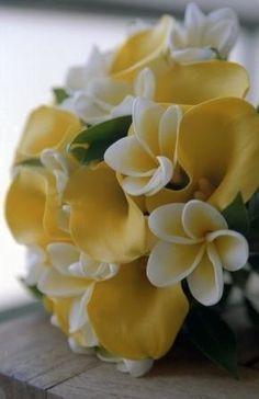 Ausmalbilder Blumenstrauß Mit Vase Inspirierend 99 Besten Frangipani Bilder Auf Pinterest Bilder