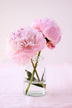 Ausmalbilder Blumenstrauß Mit Vase Inspirierend Die 1588 Besten Bilder Von Blumen Flowers Pastell Peonien Rosen Stock